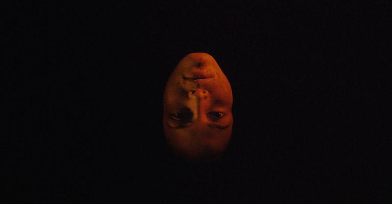 Tenemos La Carne / Мы Плоть (2016) кадр из фильма 1